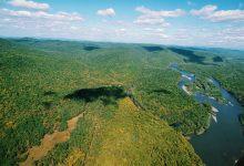 Photo of Путин поручил усилить госнадзор за реализацией проектов по освоению леса