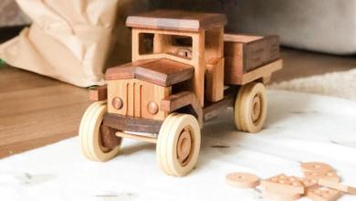 Photo of Инвестиции в действующий бизнес. Dubok Wooden Family. Конструктор из дерева для всей семьи