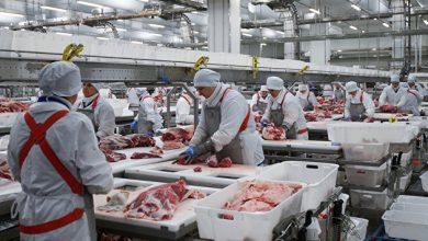 Photo of В преддверии майских праздников начали расти цены на баранину и свинину