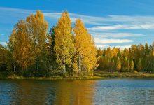 Photo of В России появится новая особая экономическая зона