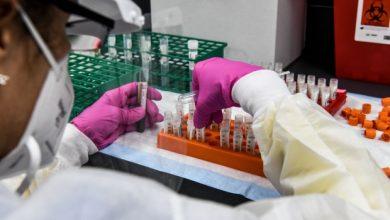 Photo of В США 99% случаев заражения коронавирусом приходятся на дельта-штамм