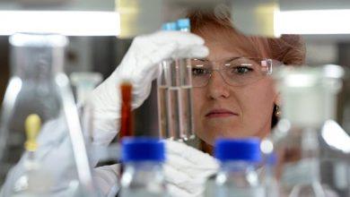 Photo of В России будут производить съедобные бактерии и микроорганизмы